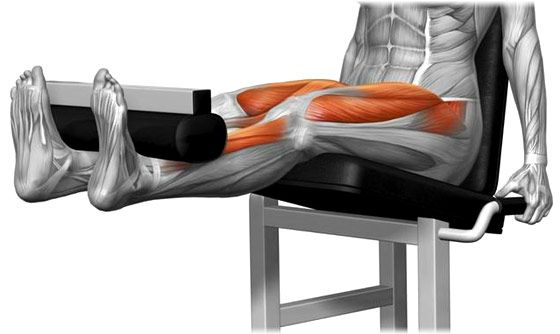 Contraction maximale quadriceps
