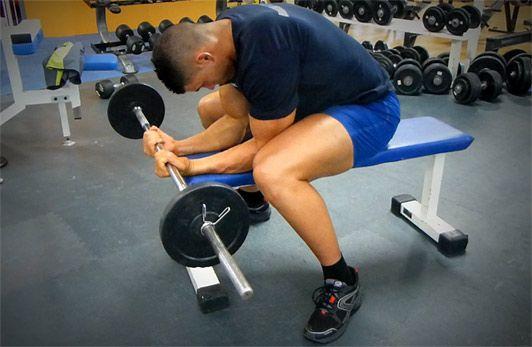 Exercices de musculation avant bras - Comment utiliser un banc de musculation ...