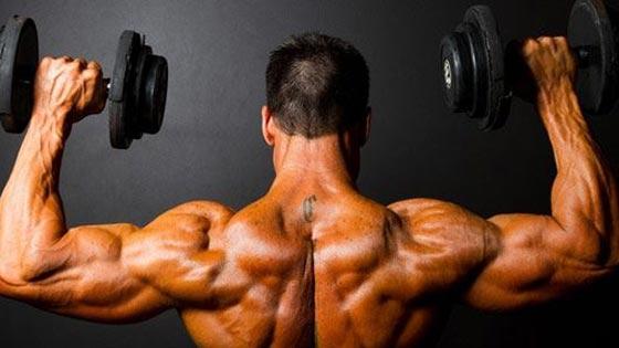 Epaules Les Meilleurs Exercices Selon La Science
