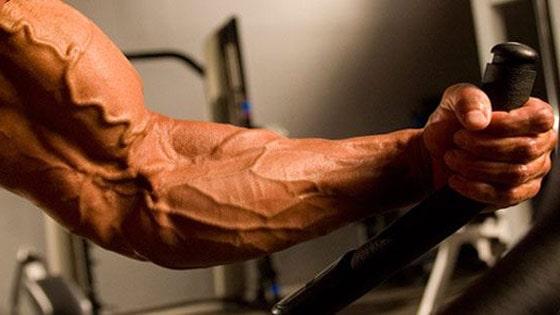 Comment voir les veines sur ses bras - Comment se couper les veines pour mourir ...